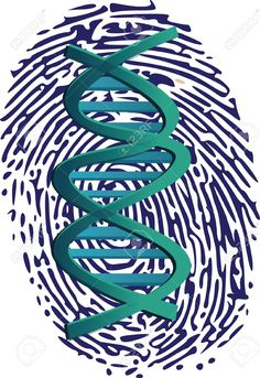 My own thumbprint + more artistic DNA strand: we are all unique and yet all the same. - OR DNA strand ON thumb.