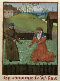 15th century miniature of a herb garden Royal 14 E.VI, f.157