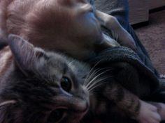 Oliver and Violet nap