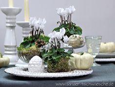 Alpenveilchen dekorieren als Tischdeko