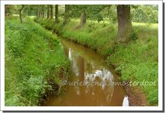 river (3)