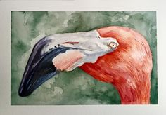 Flamingo Portrait, 2015. watercolor on Arches cold press by Liz Carlson Arts and Illustration