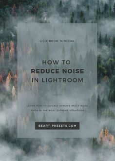 How to Reduce Noise in Lightroom (Beart Presets - All About Photography) Dslr Photography Tips, Hobby Photography, Photography Tutorials, Digital Photography, Photography Equipment, Lightroom Workflow, Lightroom Tutorial, Effects Photoshop, Photoshop Tips
