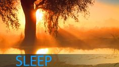 ♫ ♫ ♫ 8 Hour Sleep Music for Insomnia: Delta Waves Sleep Meditation Music, Dee. Indian Meditation, Healing Meditation, Meditation Music, Mindfulness Meditation, Calming Music, Relaxing Music, Shamanic Music, Om Mantra, Deep Sleep Music