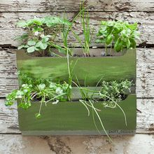 Dual Stainless Steel Wall Planter
