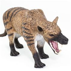 2018 Wild Safari Hyaenodon Gigas Toy Model