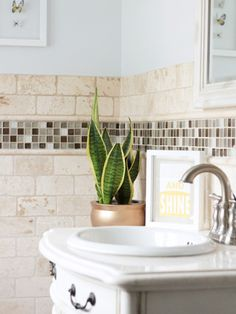 make the master bath a spa-like retreat 9 Ways to Freshen Your Space With Plants