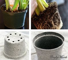 do this to blk plastic pots in backyard.