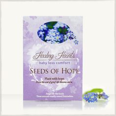 Seeds Of Hope: Easily Sown Seeds of Remembrance