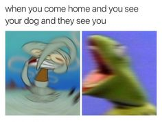 The best thing about this is that they don't say which is us and which is the dog