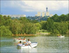 Zoo lake Johannesburg - gee what memories I have of time spent here.