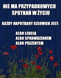 Stylowi.pl - Odkrywaj, kolekcjonuj, kupuj Letter Board, Lettering, Humor, Polish, Humour, Drawing Letters, Moon Moon, Texting, Comedy