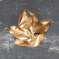 @curiouscountry posted to Instagram: Metallic Painted Magnolia Leaves would make such a gorgeous addition to wedding flowers, tablescapes, and floral designs. Available by the case in gold, silver and bronze.  Get them now for your summer wedding! #weddinginspo #weddinginspiration #weddingideas #weddingstyle #weddingdecor #weddingflowers #rusticwedding #southernwedding #metallic #magnolia #magnolialeaves #goldleaves #summerwedding #southernbride #weddingbouquet #floraldesign