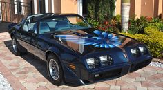 1979 Pontiac Trans Am rare factory Nocturne Blue, always wanted a Bandit Car but this would do nicely, my favorite color is blue