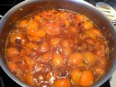 WineBookGirl: Apricot Chutney