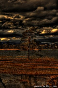 Seedamm Zürichsee HDR by Thomas Giger Hdr Photography, Switzerland, Eye, Sunset, This Or That Questions, Winter, Pretty, House, Outdoor