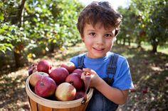 10 Fun Fall Activities with Kids