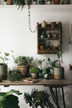African woven baskets with plants and a handmade shelf from pallet wood. The mix of natural materials, ceramics and nature make up the modern bohemian home.