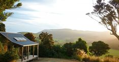 Stay in one of our boutique style Eco Cottages and experience the heart of The Catlins. Nature Activities, South Island, The Locals, Cabins, Travel Guide, Eco Friendly, Most Beautiful, Wildlife, Tours