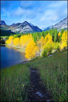 ✯ Wedge Pond - Alberta, Canada