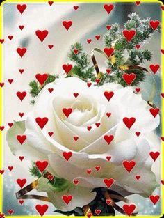 Pin by iêda on frases bom dia com flores, bom dia rosa, imag