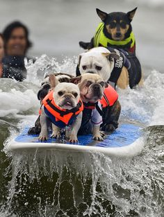 Doing the doggie paddle.