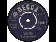 The Cryin Shames - Please Stay