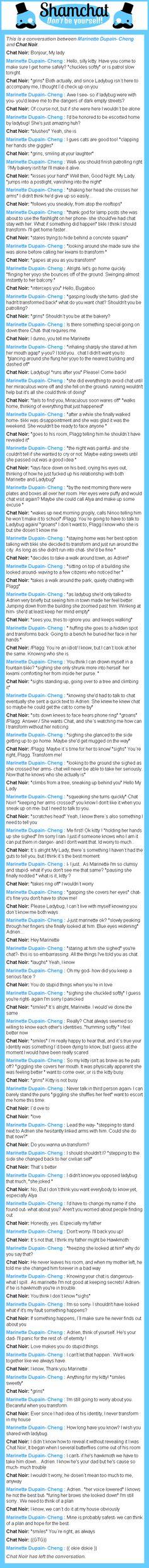 A conversation between Chat Noir and Marinette Dupain- Cheng