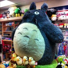 Largest Stuffed Totoro?