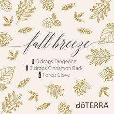doTERRA Essential Oils Fall Breeze Diffuser Blend