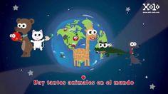 Tantos animales en el mundo - Canciones infantiles.  #xolo #cancionesinfantiles