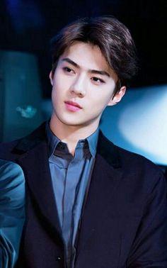 ~ from the story Zodiaco EXO K & M by Consomepanchiu (Consome~Panchi~🍲~) with reads. exo-k, zodiaco, k-pop. Kpop Exo, Exo Ot9, Baekhyun, Park Chanyeol, Sehun Hot, K Pop, Rapper, Kim Minseok, Xiuchen