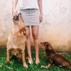 Jolie e Cacau ❤️❤️