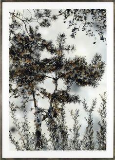 Untitled (Marsh I), 2007, oil, enamel and acrylic paint behind Plexiglas, 86 1/4 x 62 1/4 inches (219 x 158.2 cm)