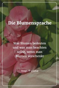 Kreative Ostergrüße Formulieren - Tipps Und Textideen Für Die ... Blumen Schenken Tipps