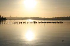 View of Lake Washington & Seattle Skyline from Kirkland, WA - Photo A.C.