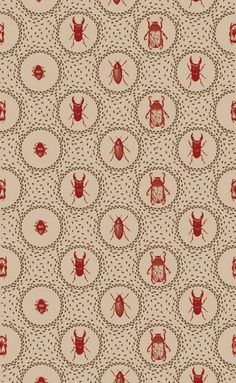 More victorian curio wallpaper...with beetles and things!