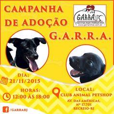 BONDE DA BARDOT: RJ: G.A.R.R.A. faz campanha de adoção de cães e gatos no Recreio dos Bandeirantes, neste sábado (21/11)