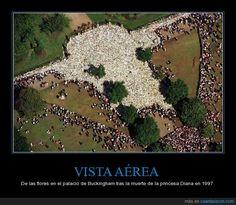 VISTA AÉREA - De las flores en el palacio de Buckingham tras la muerte de la princesa Diana en 1997   Gracias a http://www.cuantarazon.com/   Si quieres leer la noticia completa visita: http://www.skylight-imagen.com/vista-aerea-de-las-flores-en-el-palacio-de-buckingham-tras-la-muerte-de-la-princesa-diana-en-1997/