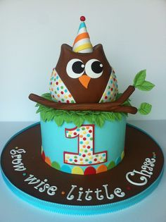 Grow Wise - Owl cake for my friend's little boy's first birthday.  The owl was his smash cake.  TFL!