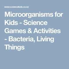Microorganisms for Kids - Science Games & Activities - Bacteria, Living Things