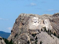 Custer State Park, South Dakota. We drove 500 miles to come to see this. I wanted to get closer, but not happening! But it's still cool to see.