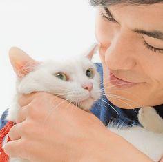 """あなご ZOOプロ所属。『ねこタクシー』で映画デビュー、『猫侍』で愛らしい白猫""""玉之丞""""を演じる。人見知りな性格で、鳴き声も小さめ。北村さんの懐がお気に入りの場所。"""