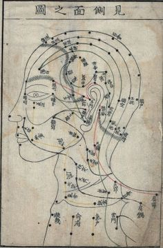facial acupuncture points - profile view