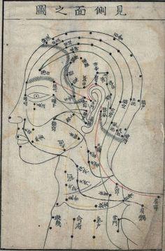 facial acupuncture points - profile view