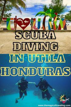 Scuba Travel, Countries In Central America, Honduras Travel, Utila, Caribbean Culture, Best Scuba Diving, Diving Course, Iceland Travel, Koh Tao