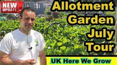 UK Here We Grow. Allotment Garden Plot Tour July 2017