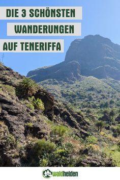 3 Wanderungen im Norden Teneriffas, die du lieben wirst.