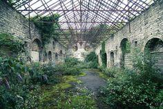 Overgrown industrial site