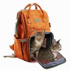Pet Backpack Carrier for Cats and Puppy Dogs Travel Backpack Soft Sided Carry Bag with Breathable Mesh Window for Outdoor Hiking Camping Biking Cycling *** Click the image for added information. (This is an affiliate link). Soft Pet Carrier, Cat Carrier, Dog Travel, Travel Backpack, Dog Feeding Bowls, Cat Backpack Carrier, Collapsible Dog Bowl, Cat Accessories, Cycling Bikes